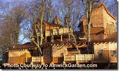 Alnwick Tree House