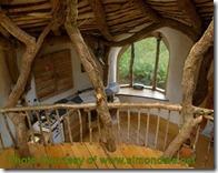 Hobbit House3