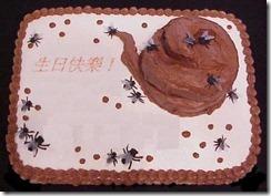 shit-cake
