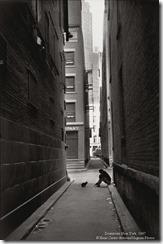 1947 NY Downtown