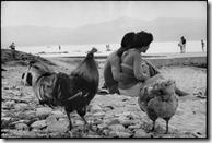 1959 Saint Tropez