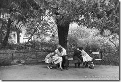 1959 The Jardin des Plantes gardens