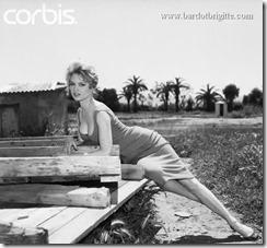Brigitte Bardot 6