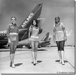 SA Flight Attendants