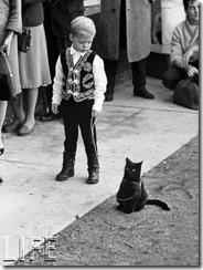 150304-black-cats-08