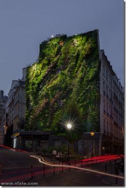 Blanc Vertical garden Paris 2