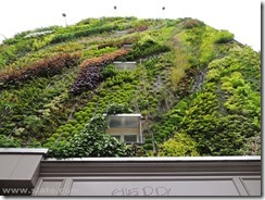 Blanc Vertical garden Paris close