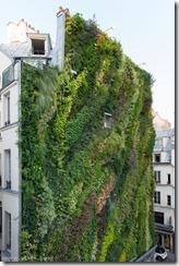 Blanc Vertical garden Paris view