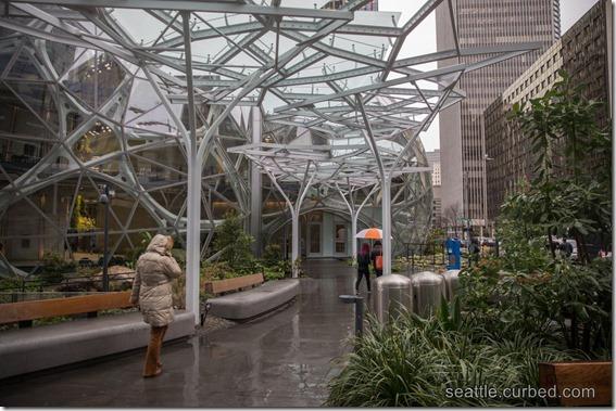 Amazon Spheres Outside Rain