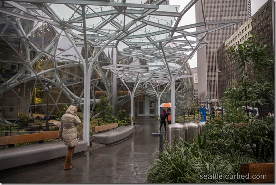 Amazon Spheres Outside Rain