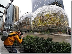 Amazon Spheres Outside