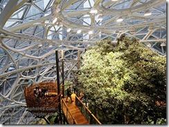 Amazon Spheres Tour