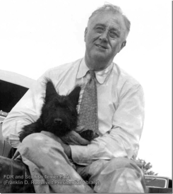FDR and Scottish Terrier Fala
