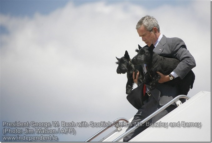 President George W. Bush with Scottish terriers Ms. Beazley and Barney