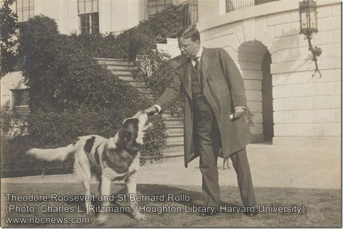 Theodore Roosevelt and St Bernard Rollo