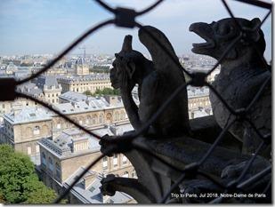 Paris-2018-07 Notre-Dame (5)