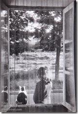 Edouard Boubat - Fille, chat et fenêtre