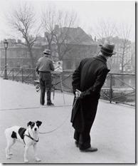 Robert Doisneau - Le Fox-Terrier Au Pont des Arts