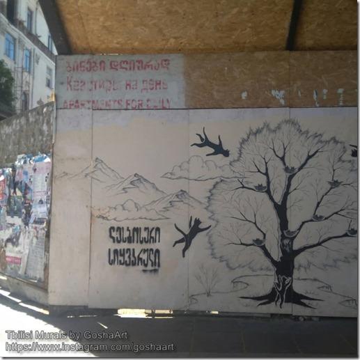 Tbilisi Murals by GoshaArt (3)