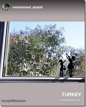 Window Art Turkey