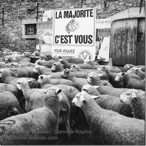 René Maltête - la majorité