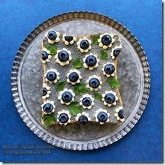 Manami Sasaki blueberries