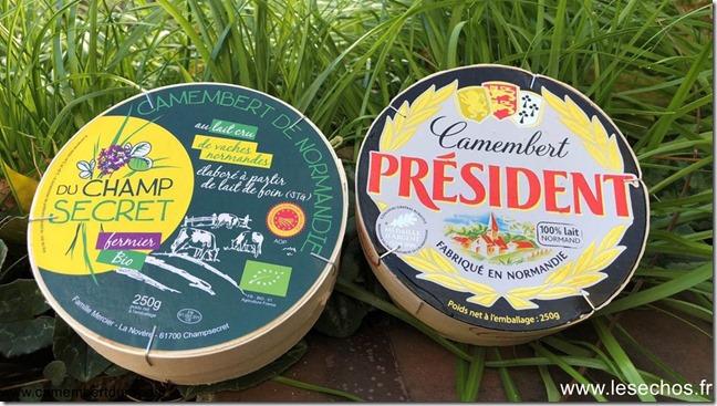 Camembert vs Camembert