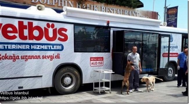 Vetbus Istanbul